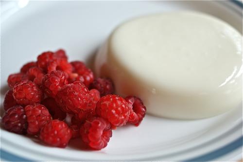Baltojo šokolado Panna Cotta